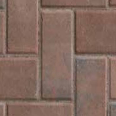 Holland - Terracotta Black Flash - Click for more info and photos